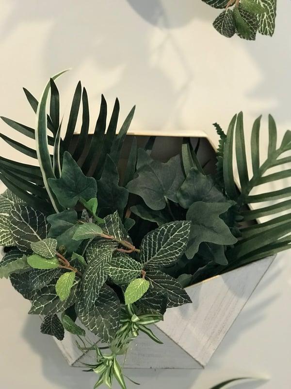 wall planters DIY