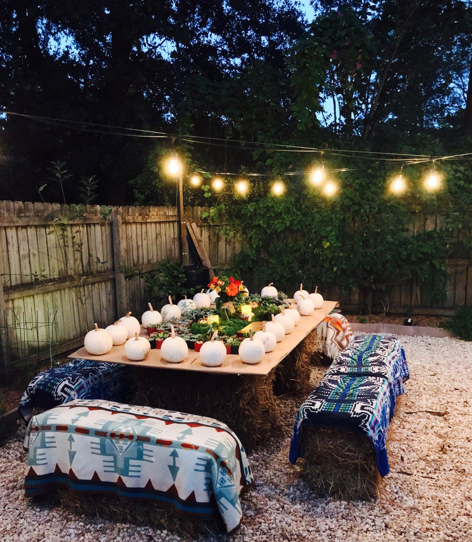 pumpkin succulent garden party