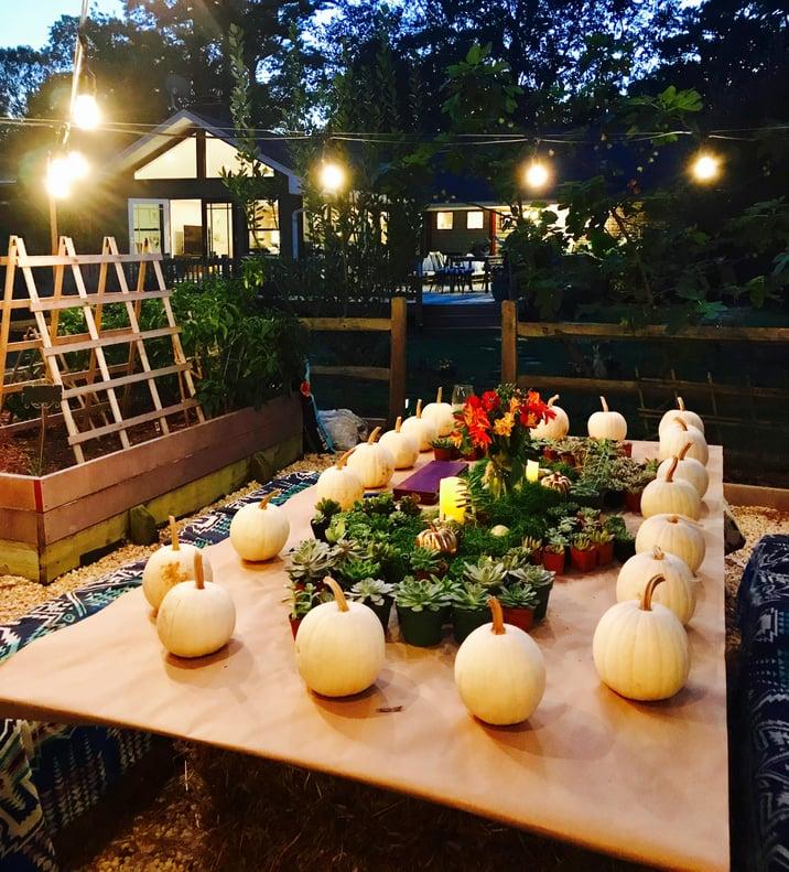 pumpkin succulent making centerpieces