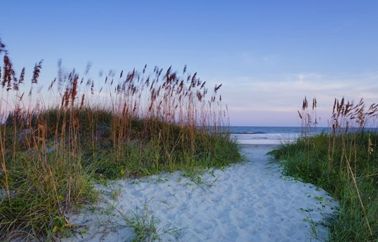 isle of palms beach vacation ideas