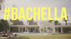 bachella theme