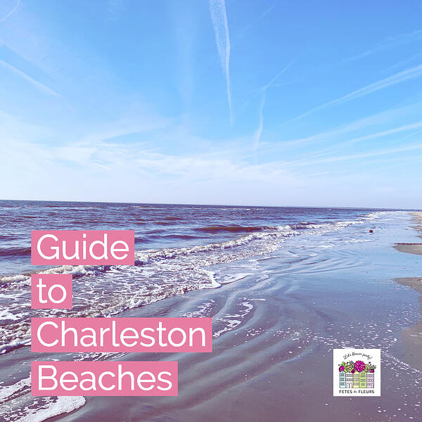 guide to charleston sc beaches